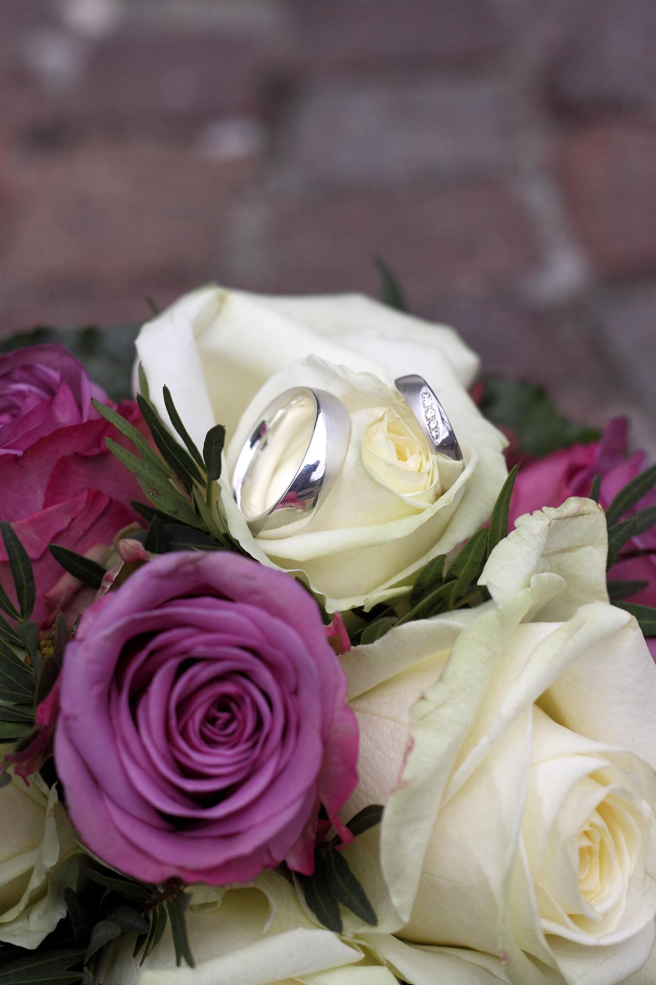 IMG_7489Fischer wedding